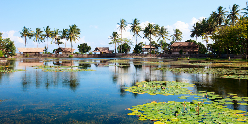 Delve into Bali's natural beauty and help support a community-based tourism project