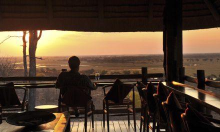Embrace Botswana's enchanting green season with Africa Albida Tourism